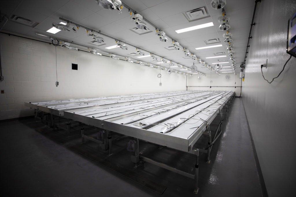 Interior growing room