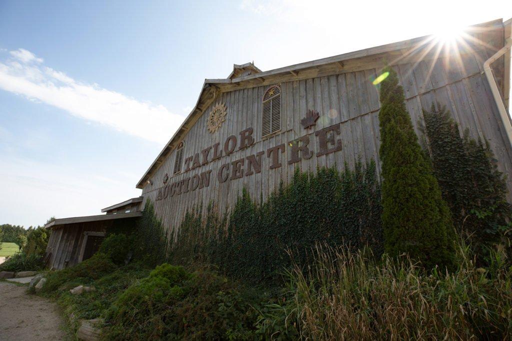 Taylor Auction Centre